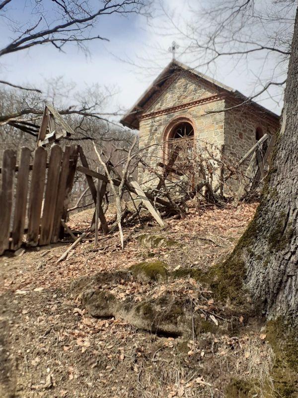 """Cimitirul Mănăstirii Bisericani: o capelă în ruină și """"coveți"""" cu balegă de vacă"""