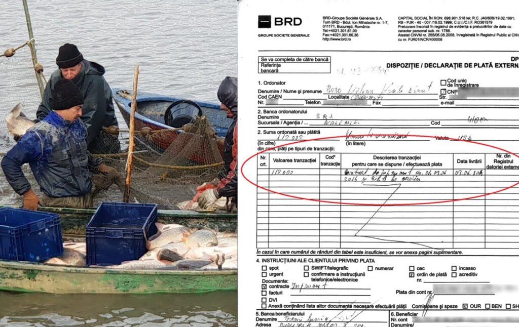 Băile Herculane: Un șef al fondurilor europene din piscicultură și-a însușit fonduri